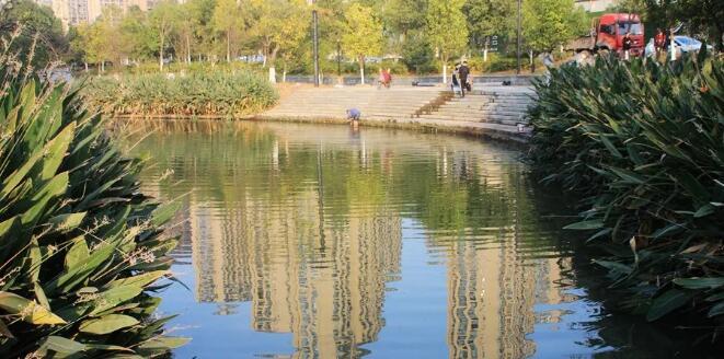 常纪文:城市、农村都能找到水污染治理和节约的方向
