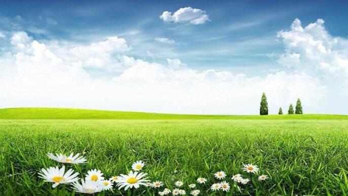 《农业面源污染治理与监督指导实施方案(试行)》