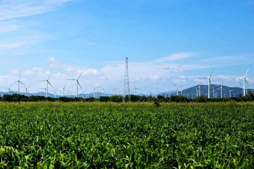 我国电力发展与改革形势分析(2021)