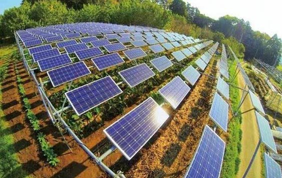 陕西凤翔高新区:25亿元光伏发电项目成功落户