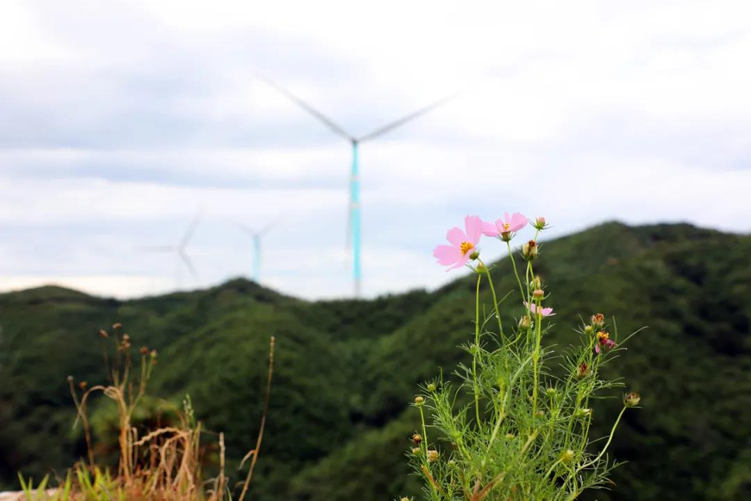 2GW,153亿!吉林省核准4个风电项目