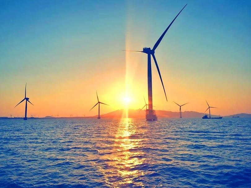 丹麦1GW海上风场招标,六大门派闻声而至!