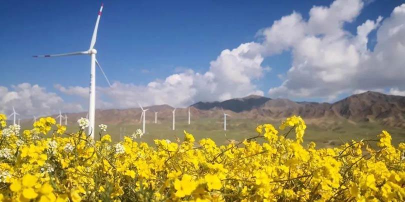 国际能源网-风电每日报,3分钟·纵览风电事!(3月30日)
