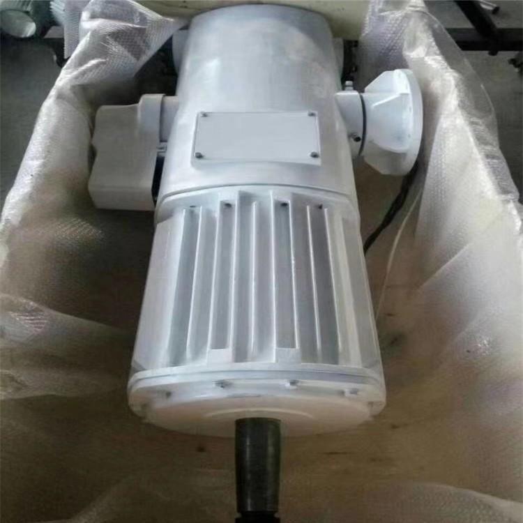 龙港 50千瓦小型永磁风力发电机 发电机进口轴承 晟成定做