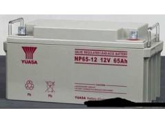 汤浅NP24-12新能源专业电池