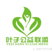 河南叶子新能源科技有限公司