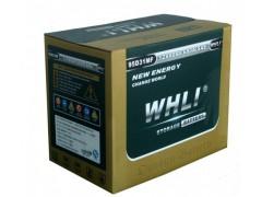 免维护电池(L2400)