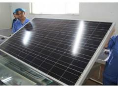 日照鑫泰莱厂家直销10W多晶太阳能电池板