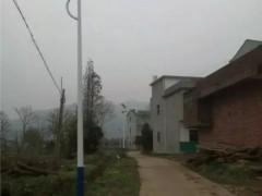 江西高安黄沙镇6米太阳能路灯带装饰板造型路灯厂家直销