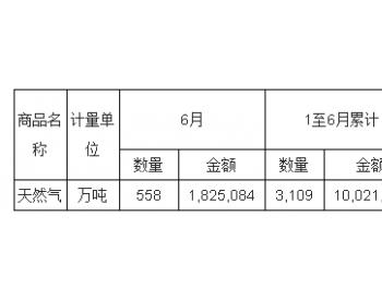 2017年6月<em>中国天然气</em>进口量统计表