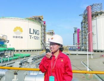 """天南地北石油人:LNG国产化""""探路人"""""""