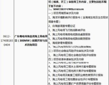 招标 广东粤电珠海金湾海上风电项目(300MW)前期开发与技术咨询项目招标公告
