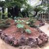 红色火山石火山岩孔隙多营养颗粒土铺面铺底水族造景打磨混土