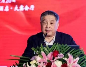 <em>王勃华</em>:光伏产业形势向好,但须警惕供需失衡与质量问题