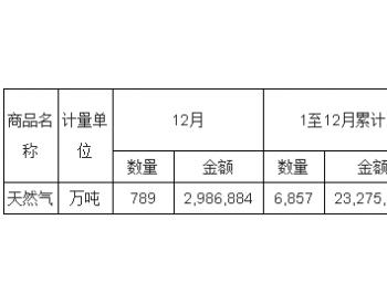 2017年12月<em>中国天然气</em>进口量统计表