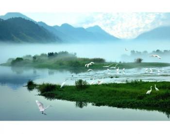 新安江生态补偿机制二轮试点取得生态、经济、制度等多方面效益