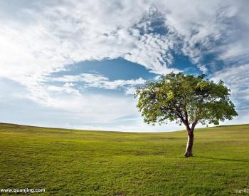 安徽公布一季度大气环境质量