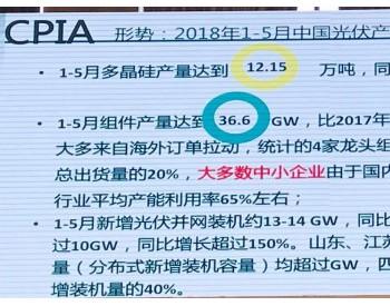 <em>王勃华</em>:今年1-5月光伏并网13-14GW,同比增加20%