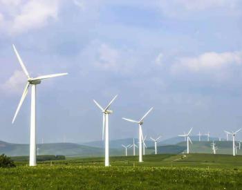 """甘肃:新能源产业更加""""风光"""""""