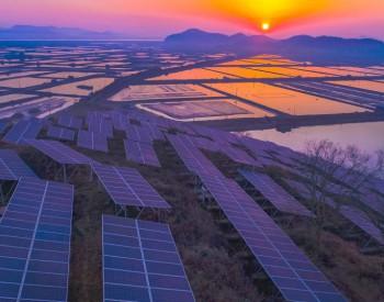 山东发文:落实可再生能源发电<em>全额保障性收购政策</em>、光伏发电税收政策!