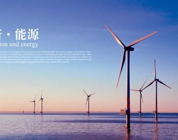 <em>中天</em>、晶科、金风等19家能源创新企业入围,最新国家技术创新示范企业复核结果公布