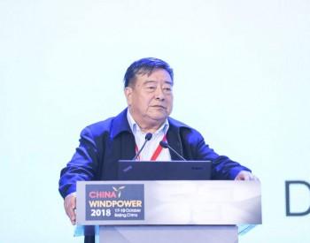 中國可再生能源學會原理事長石定寰:中國風電的發展要從高速度轉向高質量