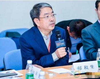 中国农机协会祁和生:分布式能源和微电网的发展利好中<em>小型风机</em>,提升新型技术应用是未来的关键