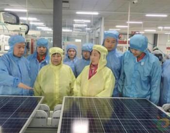 热烈祝贺<em>大海</em>光伏莱芜科林光电二期项目顺利投产