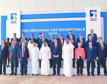 王宜林出席2018年阿布扎比首席执行官圆桌会议