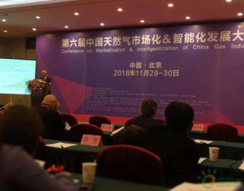 张玉清:今年<em>页岩气产量</em>会超过100亿立方米,天然气产业存在不平衡问题
