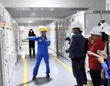 """<em>港</em>珠澳大桥已通车满月""""双保险""""电力供应稳定可靠"""