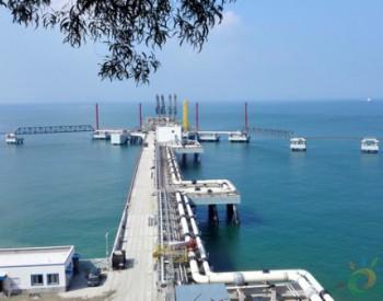 深圳<em>液化天然气</em>项目(迭福站址)码头工程通过竣工验收