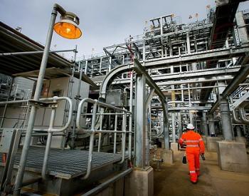 南海西部喜迎新一轮油气储量增长高峰