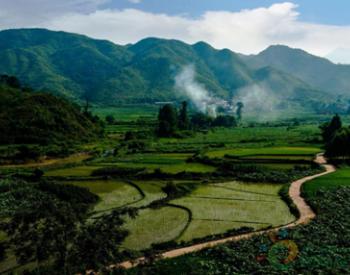 仟亿达亿碳与江西石城县达成<em>林业碳汇</em>项目合作