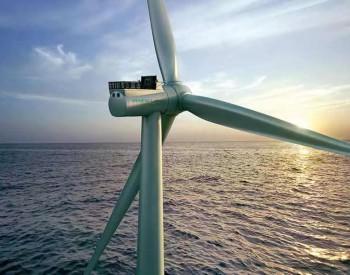 围观!山东将探索海上风电与海洋牧场融合发展研究试点!