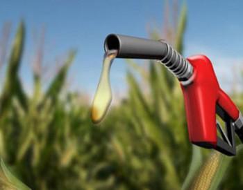 天津石化保障<em>乙醇汽油供应</em> 日均3300吨出厂