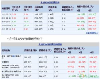 <em>东旭光电</em>02月25日深股通减持243.95万股