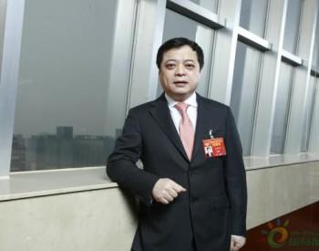 南存辉:推动新能源产业有序健康发展