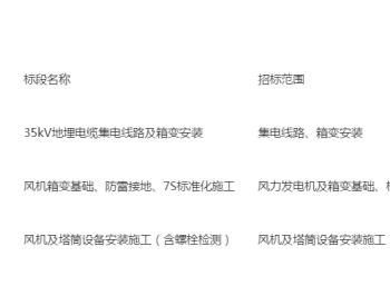 招标 | 福建漳平大西岭39.6MW风电场项目风机及塔筒设备安装施工(含螺栓检测)招标公告