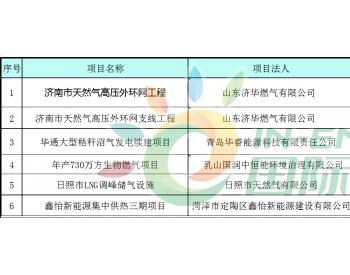 2019年山东省<em>天然气</em>重大建设项目名单公布