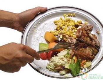 盘点:2019年中国餐厨垃圾处理技术现状