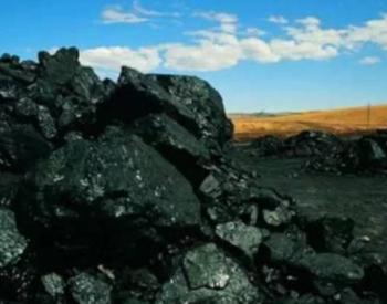 山东省人民政府办公厅关于严格控制煤炭消费总量推进清洁高效利用的指导意见