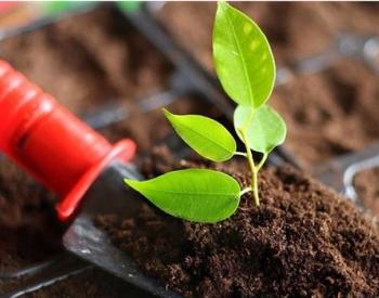 分析:怎么激发<em>土壤</em>修复市场活力?