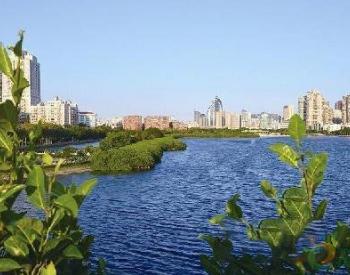 厦门市总河长令签发 打响小流域综合治理攻坚战