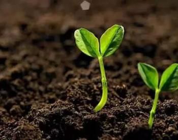 海南三亚将开展2019年<em>土壤</em>环境综合治理专项行动