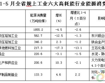 2019年1-5月甘肅省能源運行情況分析
