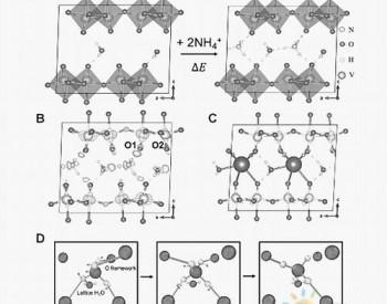 科学家在木质素选择性转化领域获进展