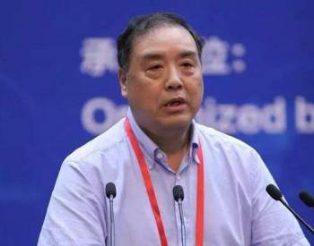 中国环科院大气环境首席科学家<em>柴发合</em>:大气治理 VOCs控制问题突出