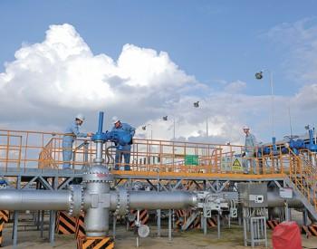 <em>销售</em>华南<em>成品油</em>累计管输量超2亿吨
