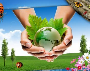 """想开荒促发展还得顶住环保压力,""""地球之肺""""让巴西陷入两难"""